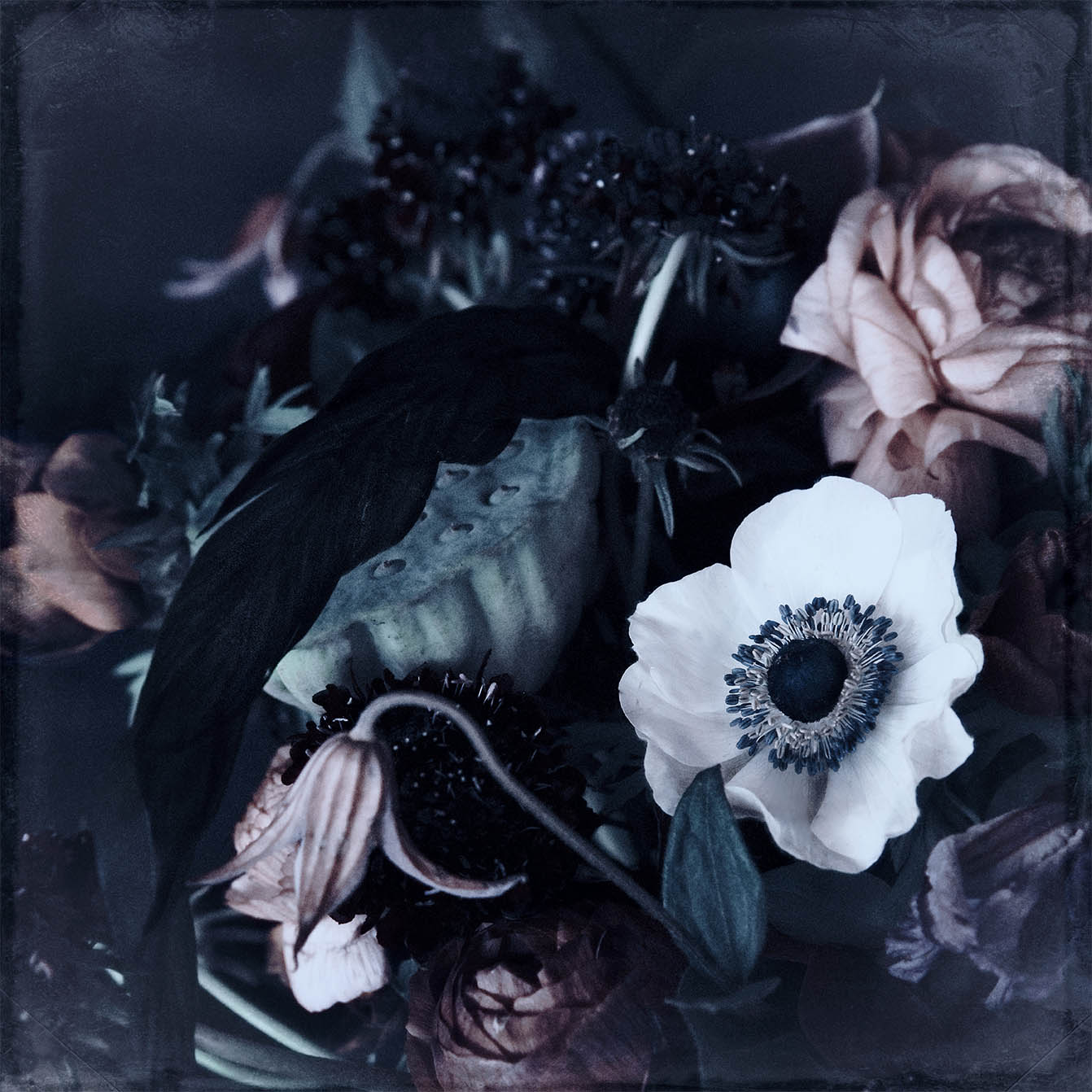 Print with ranunculus flower