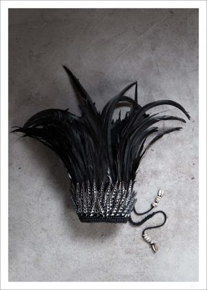 A beautiful crowd made of black feathers. Here you have our black feather crown poster