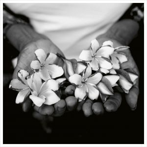 Two hands and flowers makes Flowers in hand poster